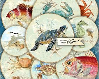 Sea Life - 2.5 inch circles - set of 12 - digital collage sheet - pocket mirrors, tags, scrapbooking, cupcake toppers