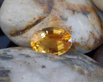Golden Yellow Citrine   CTV003