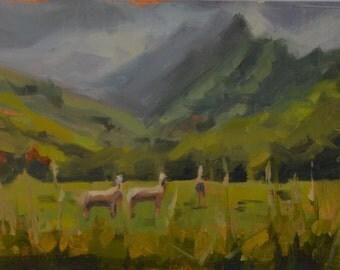Kauai - Hawaii - Hanalei Bay - Horses - Green - Mountains - Landscape - Plein Air - Oil Painting - North Shore - Island - Landscape - Lush