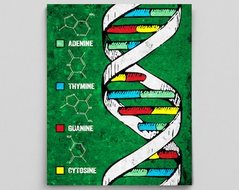 Science Poster DNA Double Helix Science Art Office Decor Nucelotides Science Teacher Gifts for Teachers Adenine Thymine Guanine Cytosine