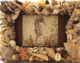 Hawaiian Sea Shell Picture Frame with Print of Brown Seahorse