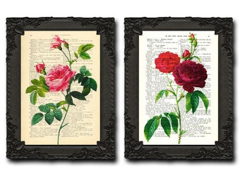 Flower Print Set, Red Roses, Floral Print Set, Garden Flowers, set of 2 prints