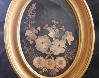Vintage 1950s Pressed Flowers in Picture Frame