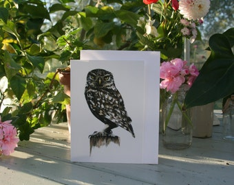 Archimedes - Blank greetings cards of an Owl drawn by Imogen Man