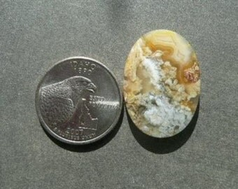 Graveyard Point Plume Agate Cabochon from Oregon  gypl8