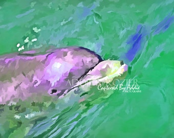 Flipper / Digital Painting Print Dolphin Ocean Hilton Head Wall Art Pop Art Photography