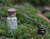 Terrarium Bottle Necklace - Nature Jewelry - Woodland Accessory - Eco Friendly - Nature Lover Gift - Fall Fashion Accessory