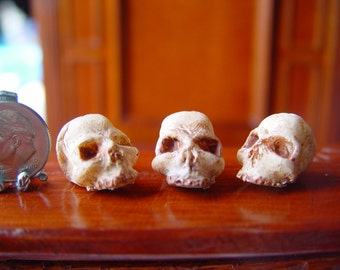 Dollhouse Miniature Resin 1:12th  Half Skull Painted for Goth, Witch, Wizard, Vampire, Harry Potter