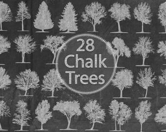 Chalk Trees