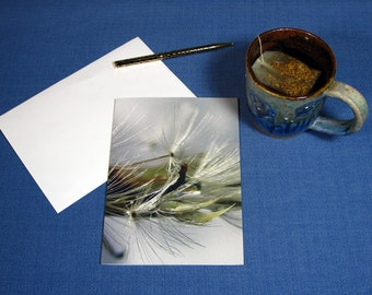 "Greeting Card ""Soft"" from The Poetry of Nature collection, dandelions, art cards, nature cards, photo cards, cards with quote, blank cards"