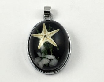 1 starfish resin  and silver tone 18mm x 29mm #CH 630
