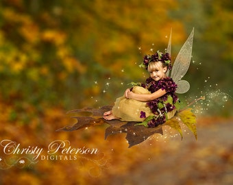 Fall Fairy Digital Background and Overlay Set