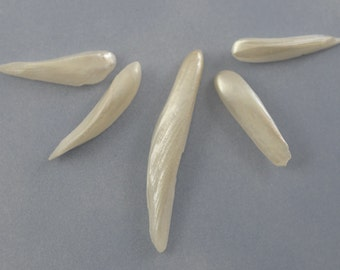 RARE Natural Mississippi River Pearl Freshwater Wing Pearls Five Pieces