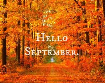 September Forecast