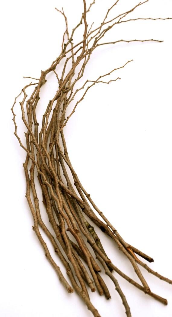 15 Cedar Forest Branches Twigs For Seasonal Decor