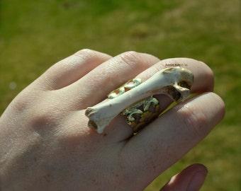 Adjustable Bird Bone Brass Ring