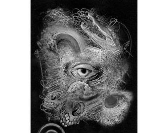 Sea Life #15, Inkjet print  7x9 image on 11x14 archival paper