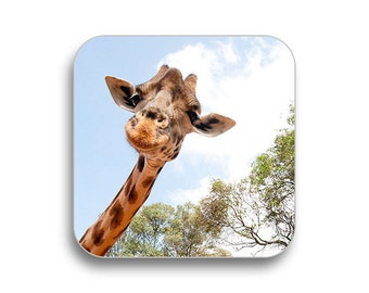 Giraffe - drink coaster, birthday gift, coaster gift set, meme coaster, housewamring gift 2P005A
