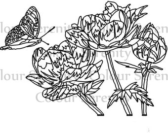 Adult Coloring Page - Flowers and butterfly - Printable Instant Download #22
