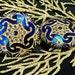 Large Handmade Czech Glass Buttons Large Matte Gold Hexagon Flower Dark Shiny Blue Size 18, 40.5mm 1pc