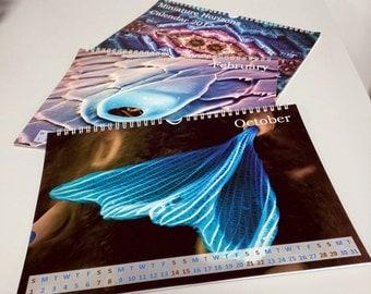 2017 Microscopy Art A4 wall calendar