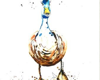 Derek the Duck