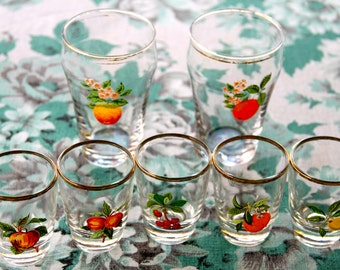 Vintage 1960s Set of 2 Collectible  Drinking Glasses with 5 matching shot glasses