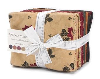 Prairie Cactus Fat Quarter Bundle by Kansas Troubles Quilters for Moda Fabric. 9510AB