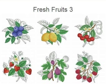 Fresh Fruits 3 Machine Embroidery Designs Pack Instant Download 4x4 5x5 hoop 10 designs APE2287