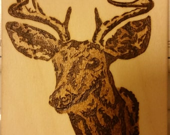 Woodburning - Tribal Deer Head