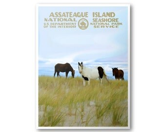 Assateague Island National Seashore Travel Poster