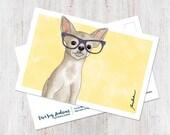 Cute Chihuahua (chichi) w...