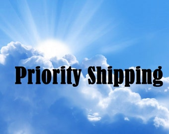 Priority 2 to 3 Day Shipping