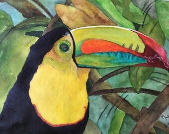 Toucan Art, Toucan Birds, Bird Painting, Toucan Sam, Toucan Original Watercolor, Watercolor Painting, Bird Painting, Animal Painting