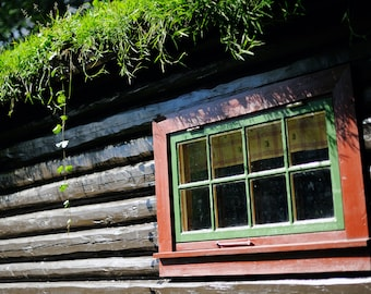 Cabin, original fine art photography, print, norway, garden, old, hut, window, green, brown, moss, roof, wood, wooden, oslo, royal palace