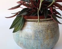 Unique African Violet Pots Related Items Etsy