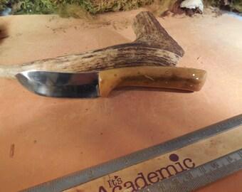 Eric's Oregon Elk Skinning Knife Persimmon wood Handles
