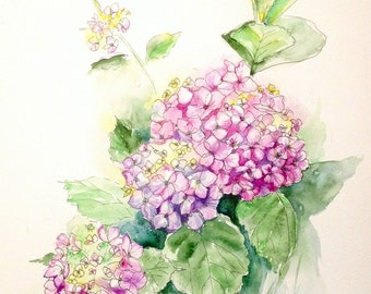 Pink Hydrangeas original watercolor painting, wall art flowers, living room decor, gift for mother, romantic, bohemian, country style