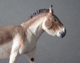 male kiang model (equus kiang) 1:20-22 scale/resine/Hand painted/ collector