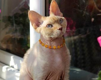 Cat Small Dog Handmade Necklace Genuine Gemstone Yellow Orange Agate With Magnetic Safety Clasp. Miniature Dog Sphynx Devonrex Cornish Rex