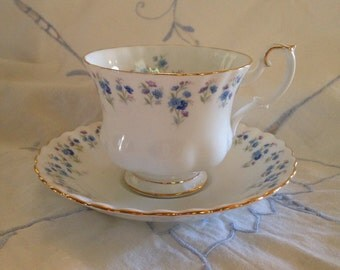 Memory Lane Royal Albert Teacup and saucer