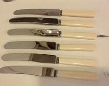 Vintage Bone handled knives