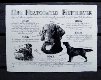 Antique styled dog standard - Flatcoated Retriever