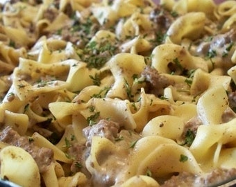 Easy Dinners ~ Stroganoff with your choice of pasta