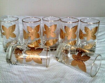 Seven High Ball Bar Glasses with Gold Trim