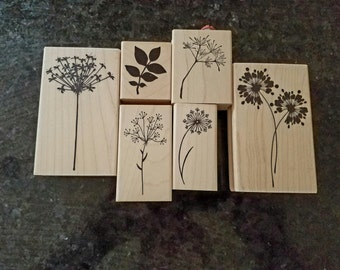 """Amuse Stamps """"Flowers and leaves"""" Set"""