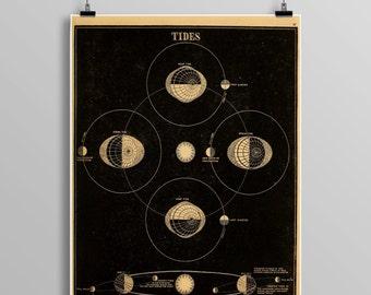 Vintage tides print, constellations, Venus, Celestial Maps, Vintage Moon, Vintage planets, Telescope, Planets, Astronomy Illustration, 466