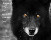 To Look into the Eyes of a Wolf is to Look into your own Soul.