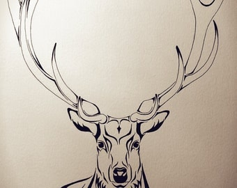 Hand-painted Stag Illustration