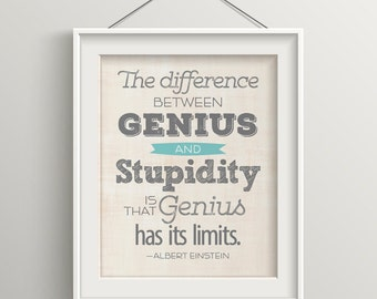 Funny Inspirational Art Office Decor Funny Gift Fun Art Print Funny Quote Graduation Gift Albert Einstein Office Decor Teacher Gift Print